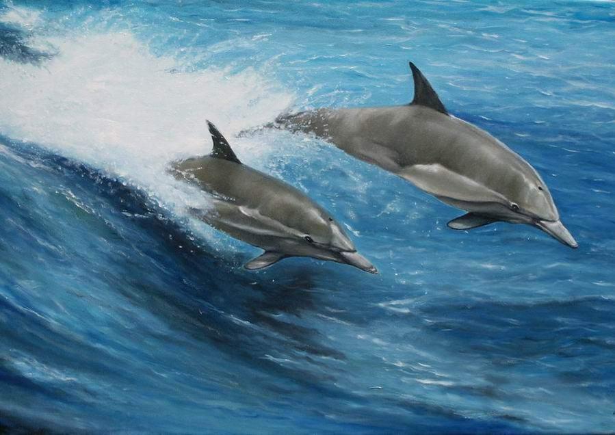 delfin spiele online